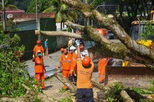 O Plano estabelece procedimentos de urgência, para diversos órgãos, como Defesa Civil, Bombeiros, Serviços Urbanos e Saúde, em situações de desastres