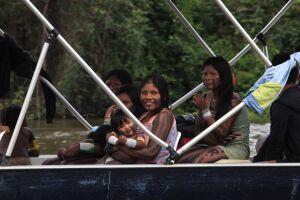 Alguns povos indígenas que tiveram suas terras homologadas têm conseguido bons resultados por meio da comercialização de seus produtos