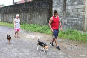 O projeto precisa de novos voluntários para possibilitar que mais cães façam seus exercícios diários