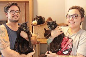A farmacêutica Renata Jardim possui 12 gatos, sendo três pretos e afirma ter plena consciência da maldade  que existe