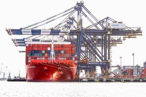 As tarifas cobradas abrangem a utilização da infraestrutura portuária, terrestre e serviços gerais