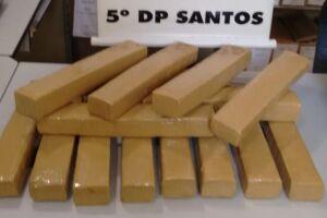 Tijolos de maconha apreendidos na Zona Noroeste de Santos