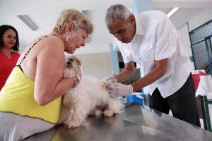 Morros e Zona Noroeste recebem vacinação contra a raiva neste sábado (25)