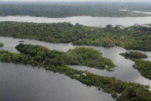 Em 2017, a diminuição do desmatamento nos dois biomas permitiu reduzir as emissões de dióxido de carbono em 610 milhões de toneladas na Amazônia e 170 milhões de toneladas no Cerrado