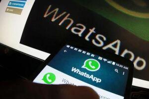 Ministério da Saúde quer combater fake news com serviço pelo WhatsApp