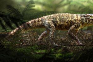 Fóssil do Caipirasuchus mineirus revela que o animal tinha um esqueleto articulado e possuía hábitos terrestres.