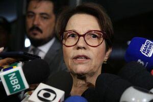 Tereza Cristina pretende também encontrar-se com o atual ministro da Agricultura, Blairo Maggi, para ser informada de detalhes da área