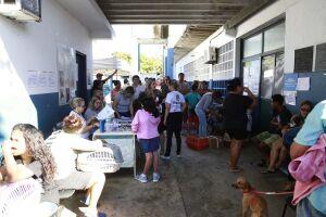 Os animais pertencem a moradores do bairro Cantagalo, na Enseada