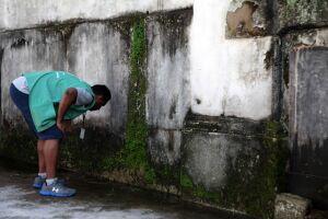 O mutirão desta semana contra a proliferação do mosquito Aedes aegypti será realizado no bairro do Estuário