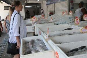 Operação geral de fiscalização foi realizada no Mercado de Peixe de Santos