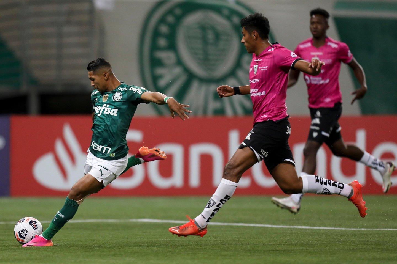 Confira imagens de Palmeiras 5 x 0 Del Valle pela Libertadores