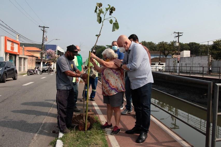No dia da Árvore, Santos se aproxima de 3.500 mudas plantadas