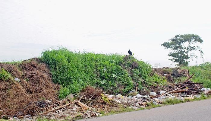Na Estrada Coronel Joaquim Branco há uma espécie de 'lixão' de resíduos de construção e demolição que ocupa um terreno nas proximidades do Aeroporto de Itanhaém