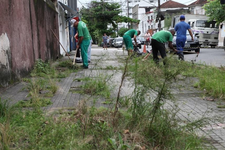 Serviço de capinação foi realizado na rua Antônio Bento