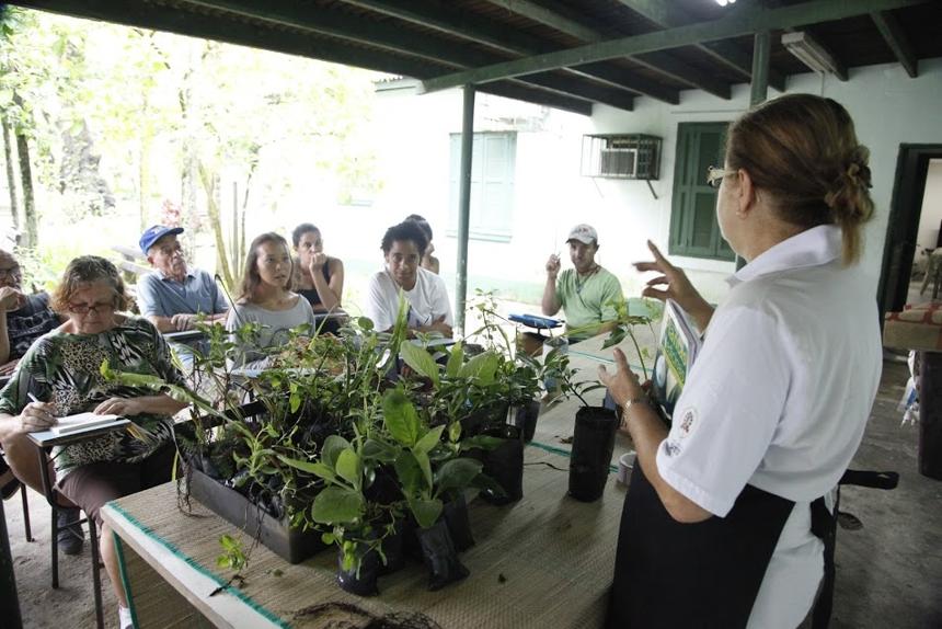 O curso de jardinagem é direcionado aos munícipes que ganham até dois salários mínimos